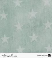 denimlove STARS - Jeans Mint *Bio-Sommersweat*