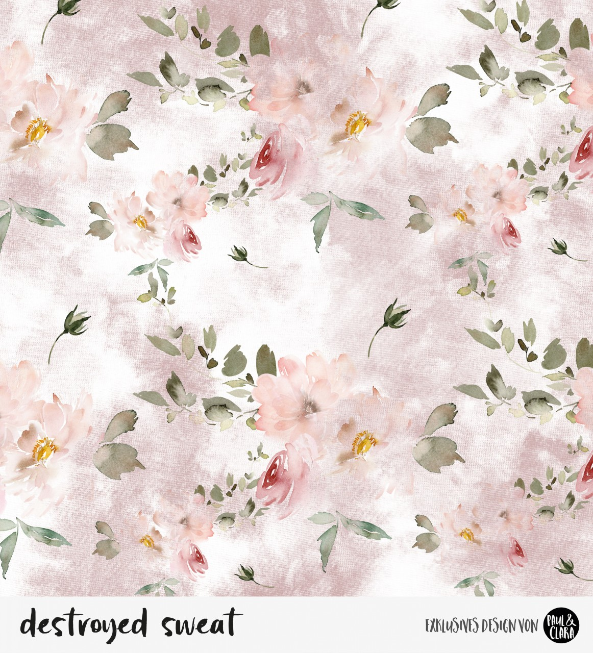 destroyed sweat flowers - Rosa *Bio-Sommersweat*